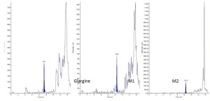 LC-MS method for quantification of Insulin Glargine in rat plasma