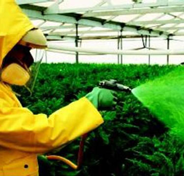 agrochemical and development
